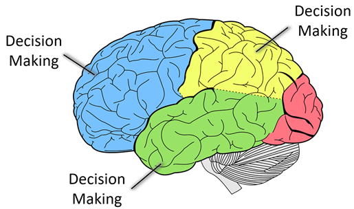 Cognitian - Decision Making - UI Design for Elderly