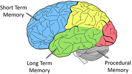 Cognitian - Memory - UI Design for Seniors